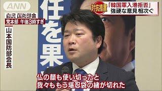 レーダー照射「堪忍袋の緒が切れた」 自民国防部会(19/01/22) thumbnail