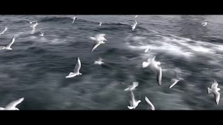 Canan Sağar - Sen Gelmeden Önce (Official Video)
