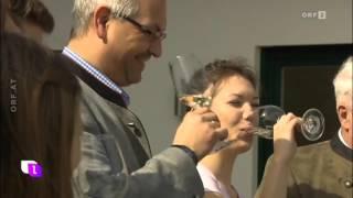Weingut Laurer Heute Leben 2016 das Feinviertel