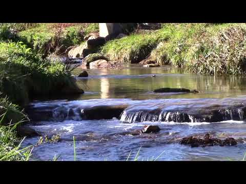 Appalachian State: Durham Park