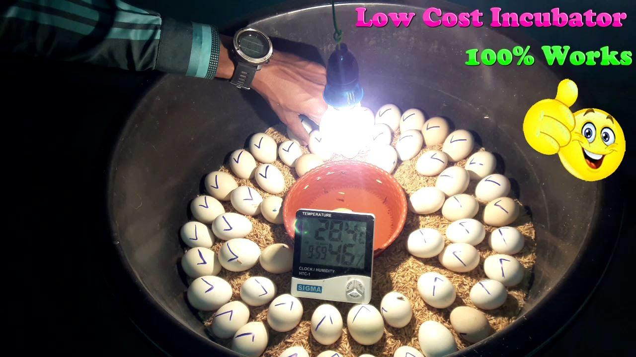 DIY - Incubator For Chicken Eggs Simple and Easy || Homemade Egg Incubator
