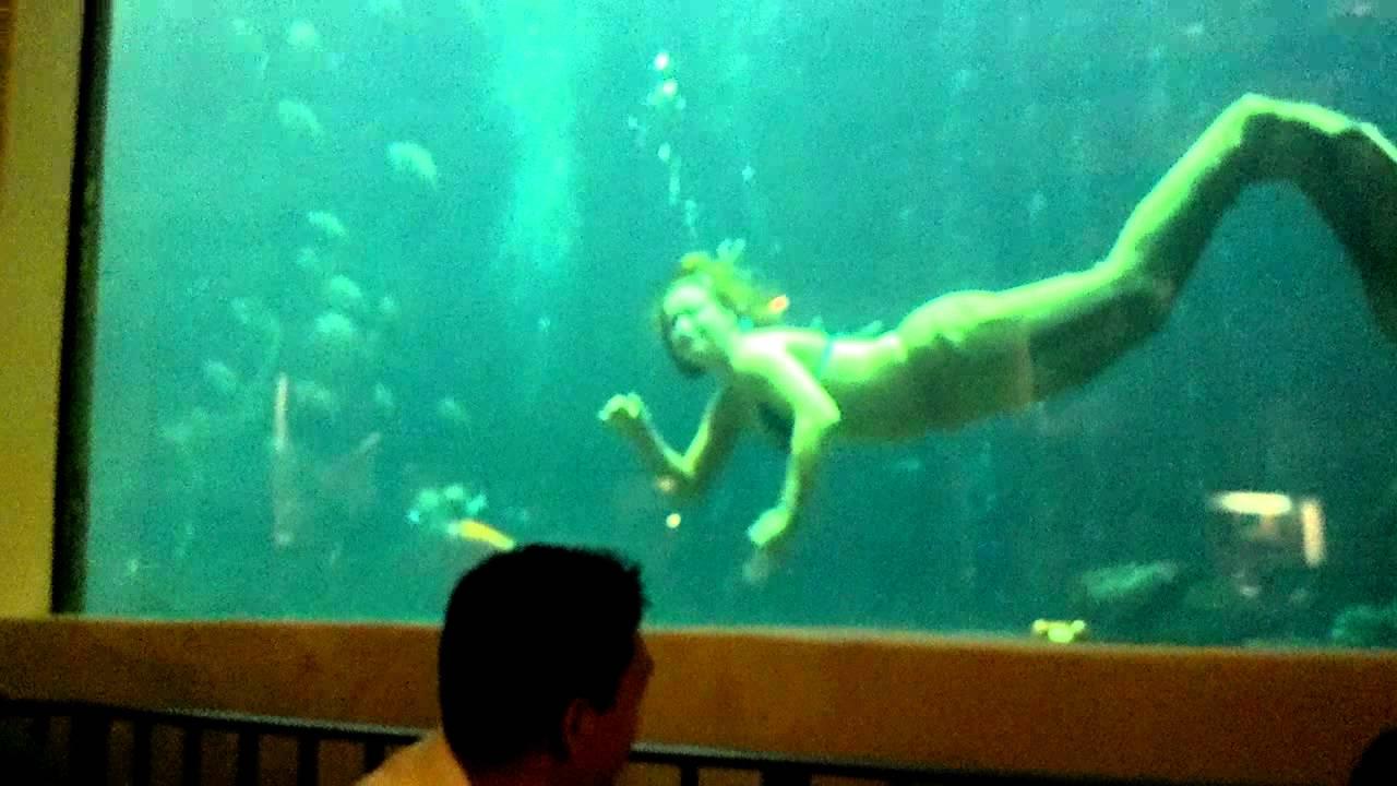 Oceanarium Restaurant Pacific Beach Hotel