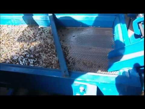 Coffee de Huller (Official video)