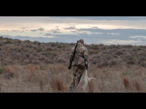 Colorado Coyote Crackdown | S1:E9