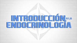 INTRODUCCION A LA ENDOCRINOLOGIA con el Dr. Jorge Fernandez, Medico en el Deporte