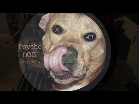 High Energy Psychedelic (Drumless track)- Freestyle improvisation, Pedro Silva