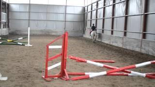 Верховая езда, обучение детей и взрослых в Черкассах