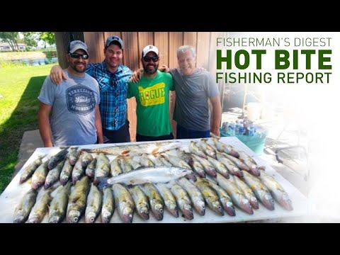Saginaw Bay Walleye Fishing And More - Hot Bite Fishing Report - May 13th