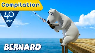 Download Bernard Bear | Sports Fails COMPILATION | 40 MIN | Cartoons for Children | Full Episodes
