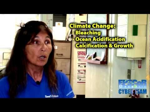 Ku'ulei S. Rodgers, Ph.D., Coral Reel Ecology Lab, Hawai'i Institute Of Marine Biology