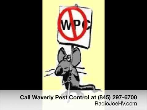 Waverly Pest Control Jingle - Radio Advertising Commercial