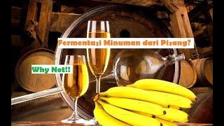 Download lagu Rahasia Fermentasi Pisang Raja | Banana Wine part 1