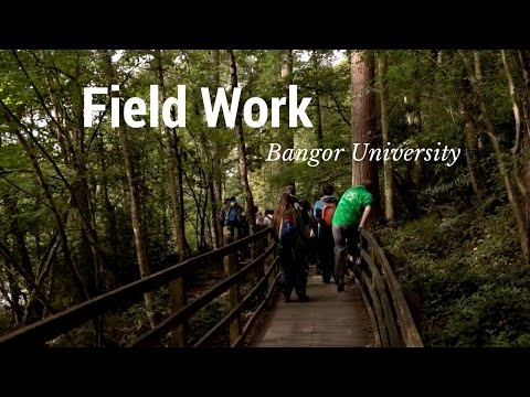 Field Work - School of Environment, Natural Resources and Geography