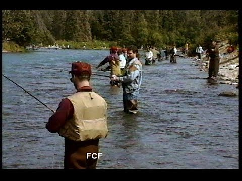 Fly Fishing for Red Salmon on the Russian  River and Kenai River, Alaska