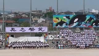 城南高校体育祭2017青ブロック