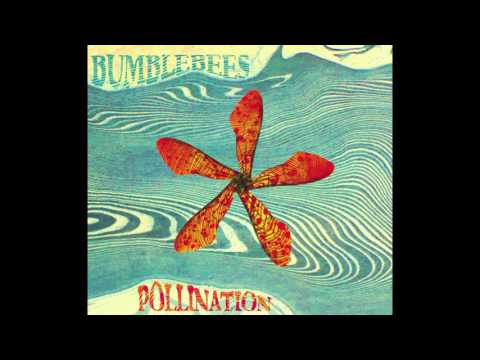 Bumblebees - Pollination (Full EP)