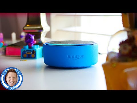 Amazon Echo Dot Kids Edition & Freetime Unlimited Review & Tutorial