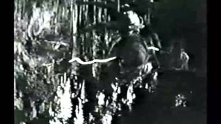 Classic Monster Movie Trailers The Spider