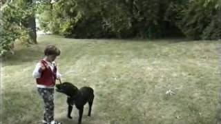 Mans Best Friend Dog Training The Early Years Good Stuff!!