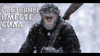 Планета обезьян: Война (обзор фильма). Качество, которое делают раз в пять лет.