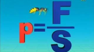 Для урока физики 04 Давление