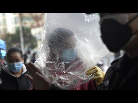 Coronavirus, l'Oms: presto per parlare di declino dell'infezione
