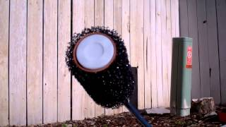 Daddy Chores: How To Paint And Restore An Old Wood Picket Fence. Part 2