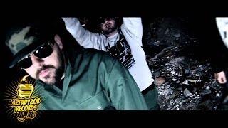 Teledysk: DonGURALesko feat. Miodu (JAMAL) - Mikrokosmos MATHEO REMIX