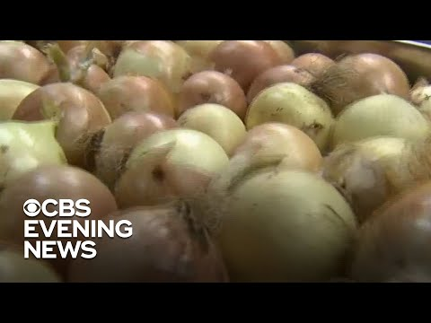 Salmonella outbreak linked to onions