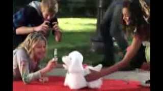 Hasbro FRF GoGo puppy 94371 Ходячий щенок FurReal Friends интерактивный