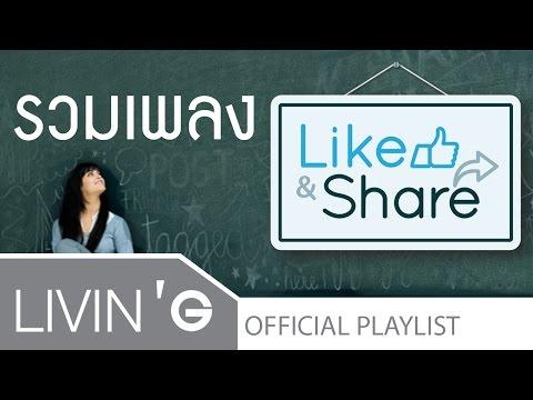 รวมเพลงเพราะ ช้าๆ ซึ้งๆ อัลบัม Like & Share [Official Audio]
