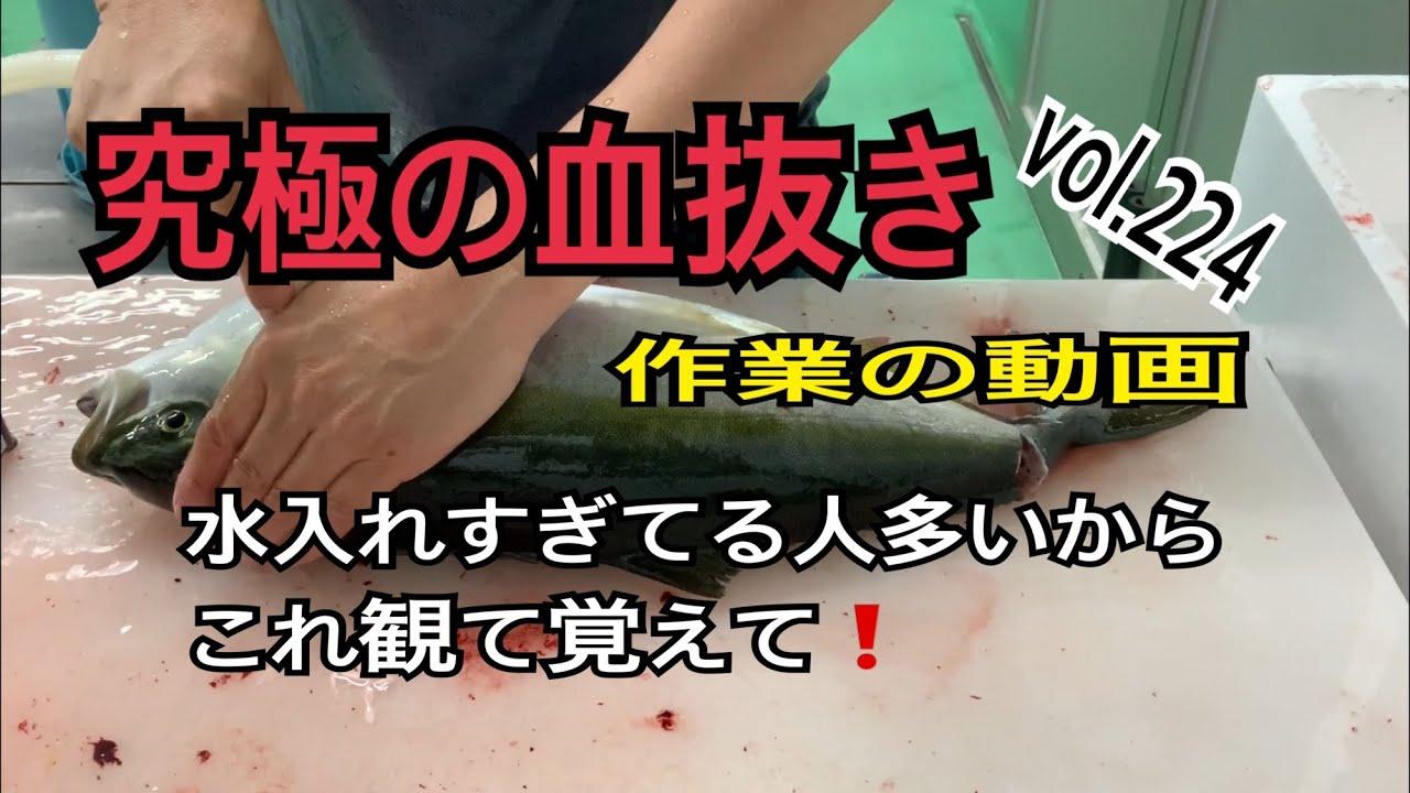 究極の血抜き作業動画編 vol.224