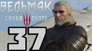 Прохождение Ведьмак 3 Дикая Охота — #37 (Последнее Желание)
