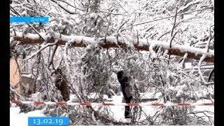 Негода знеструмила на Черкащині 74 населені пункти