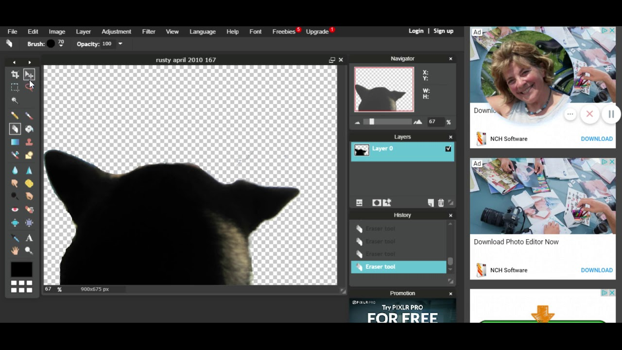Pixlr Editor Easy Photo Editing Removing A Background Making