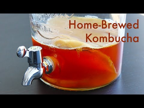 making-home-brewed-kombucha- -asmr-cooking- -in-carina's-kitchen