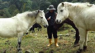 A Journey into the Herders Paradise