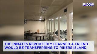8 Trinitarios members destroy room at Bronx jail barge: sources