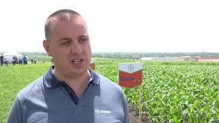 Байер Агро Арена 2019 - с. Бяло поле -  28.05. - технологии в царевица