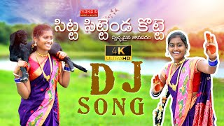 SITTA SITTENDA KOTTE - LATEST DJ FOLK SONG 2020 | #LAVANYA #BUNNY | #DJSONG  @MANAIR MUSIC & MOVIES