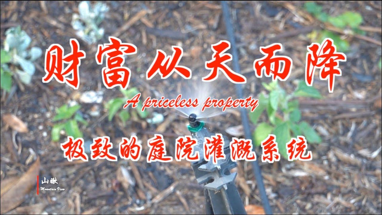 财富从天而降-极致的庭院灌溉系统 (第56期) A priceless property (Ep56)