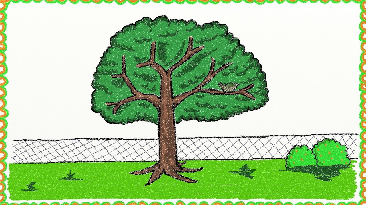 Drawing A Simple Tree | How To Draw A Tree | Drawing For Kids