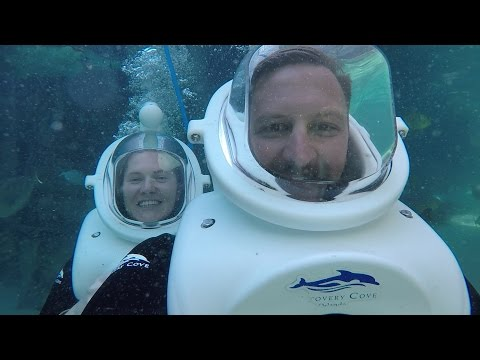 Discovery Cove Birthday Bash | Our First Time Trying SeaVenture & Private Cabana Tour!