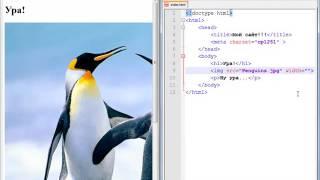 Программирование с нуля от ШП - Школы программирования Урок 8 Часть 5 Курсы 1с 8 торговля склад