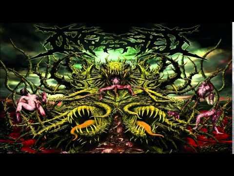 Ingested - Surpassing the Boundaries of Human Suffering (FULL ALBUM)