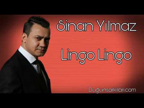 Sinan Yılmaz - Lingo Lingo