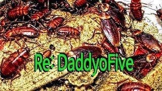 DaddyoFive and