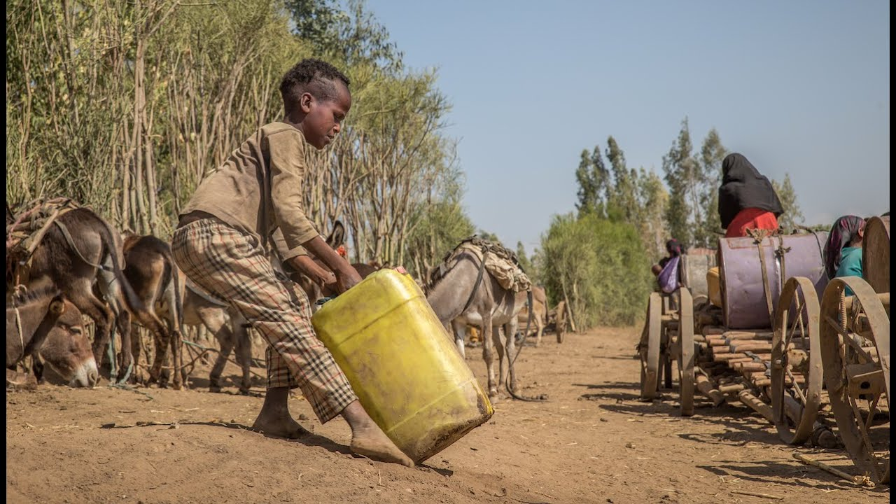 Devastating Drought in Ethiopia