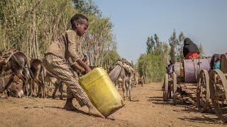 Devastating Drought in Ethiopia