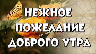 доброе утро ! Красивые слова и пожелания доброго утра женщине , девушке , подруге !